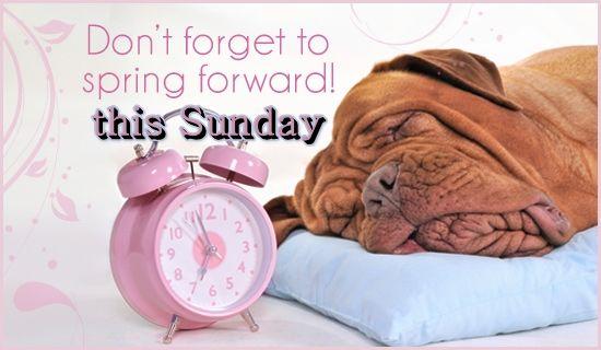 Spring Forward This Sunday