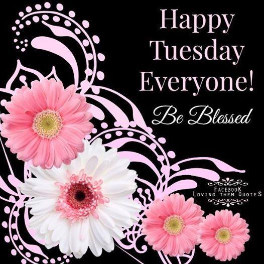 Happy Tuesday Everyone