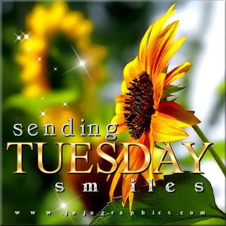 Sending Tuesday Smiles Pictures, Photos, and Images for