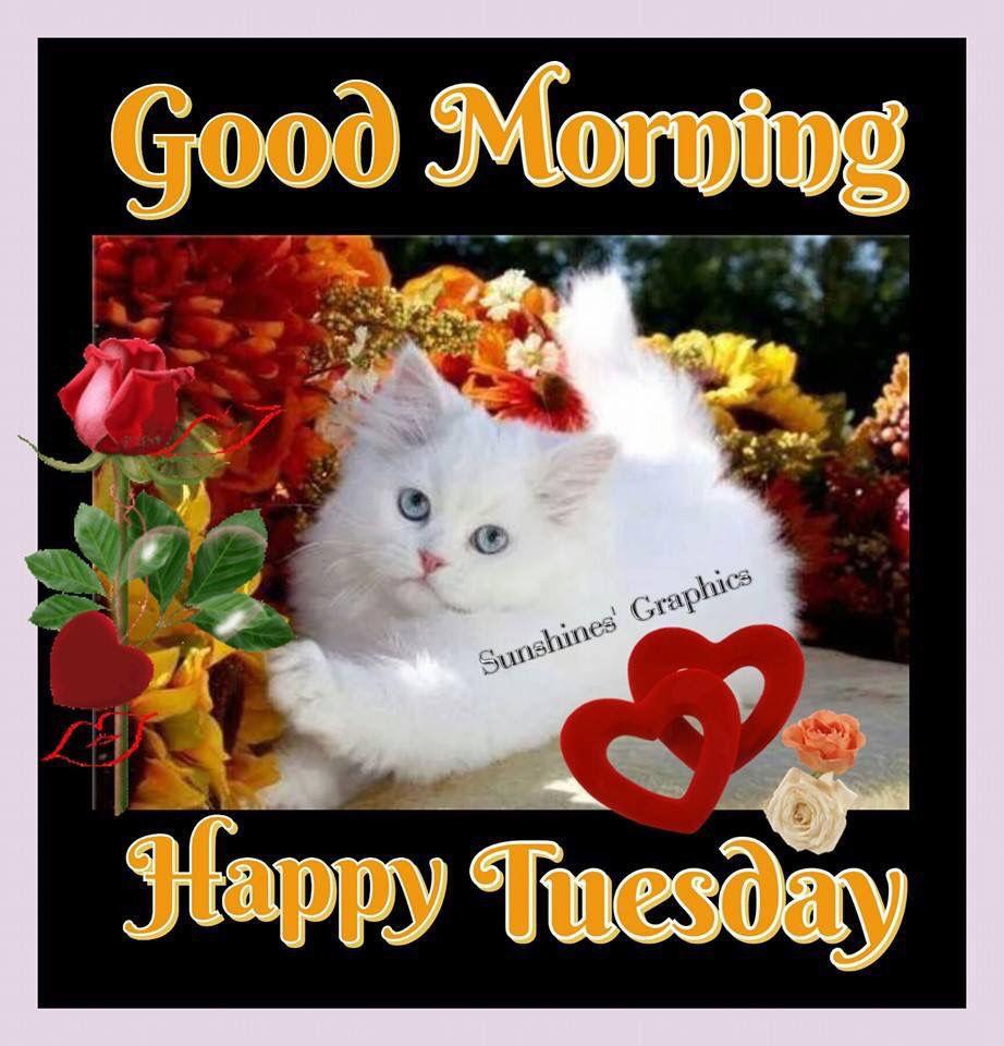 Good Morning Happy Tue...