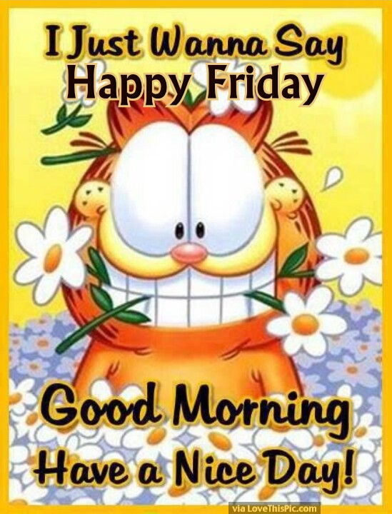 Garfield Good Morning Happy Friday Pictures, Photos, and ...