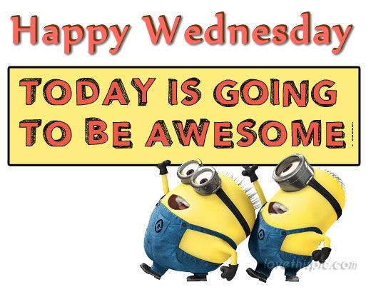 Happy Wednesday Today Is Going To Be Awesome Pictures ...