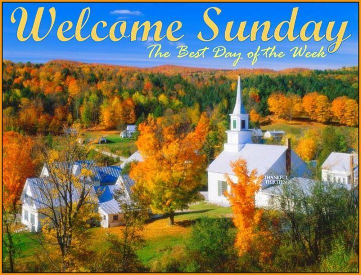 Welcome Sunday The Best Day Of The Week