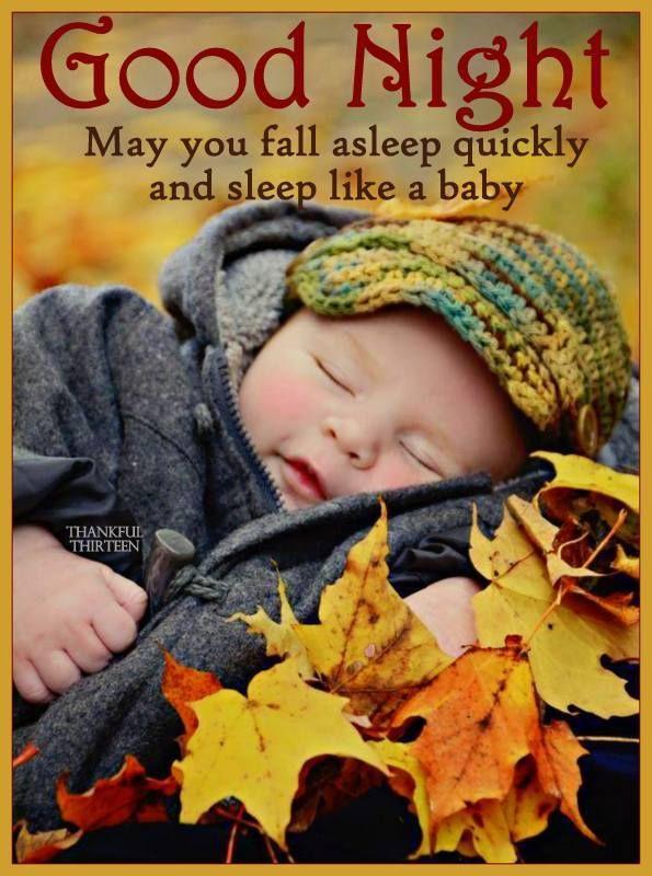 Good Night May You Fall Asleep Quickly And Sleep Like A