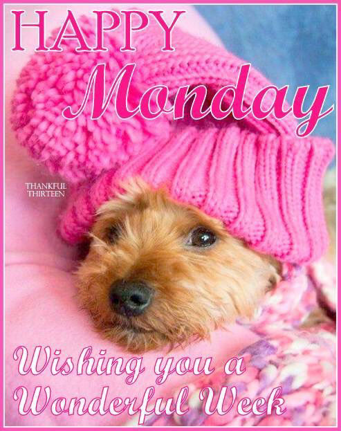 Happy Monday Wishing You A Great Week Pictures Photos