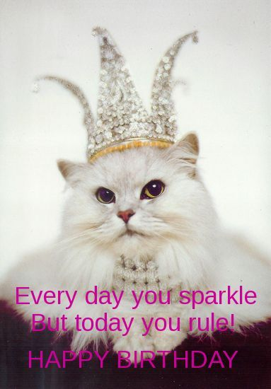 Today You Rule Happy Birthday Pictures, Photos, And Images For Facebook -8792