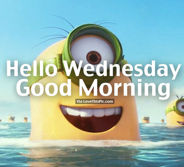 Hello Wednesday Good Morning Swimming Minion Quote