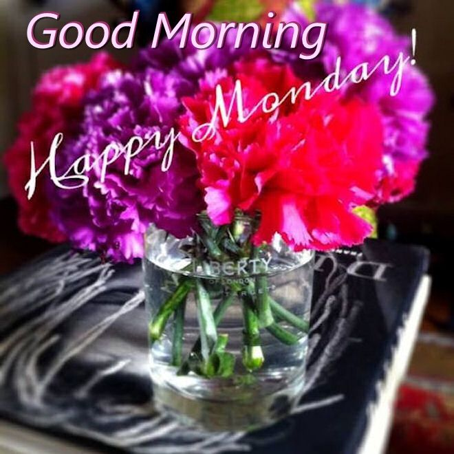 Good Morning Happy Monday Image With Flowers Pictures