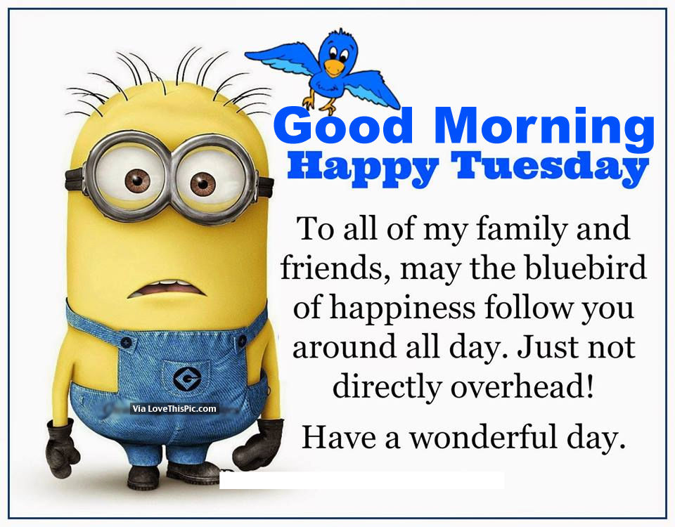 Good Morning, Happy Tuesday Pictures, Photos, And Images