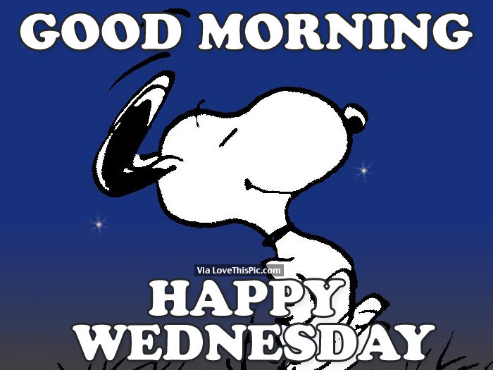 Good Morning Meme Wednesday : Good morning happy wednesday pictures photos and images