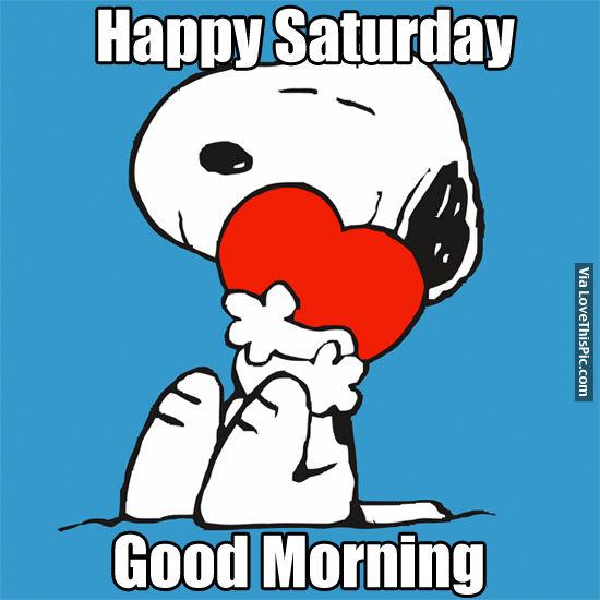 Good Morning Saturday Funny Photos : Happy saturday good morning pictures photos and images