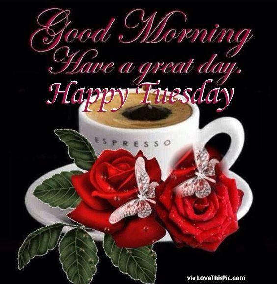 Good Morning Have A Great Day Happy Tuesday Pictures