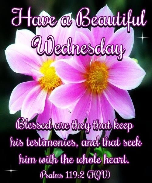 Beautiful Blessed Wednesday Pictures Photos And Images