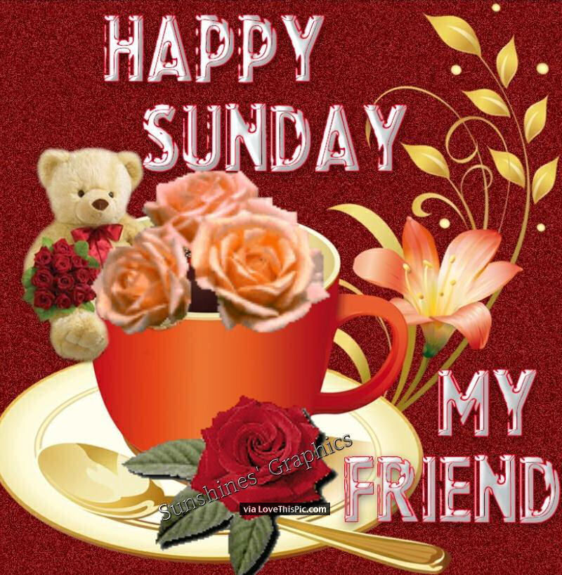 Good Morning Happy Sunday My Friend : Happy sunday my friend pictures photos and images for