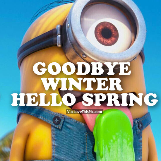 goodbye winter hello spring minion pictures photos and