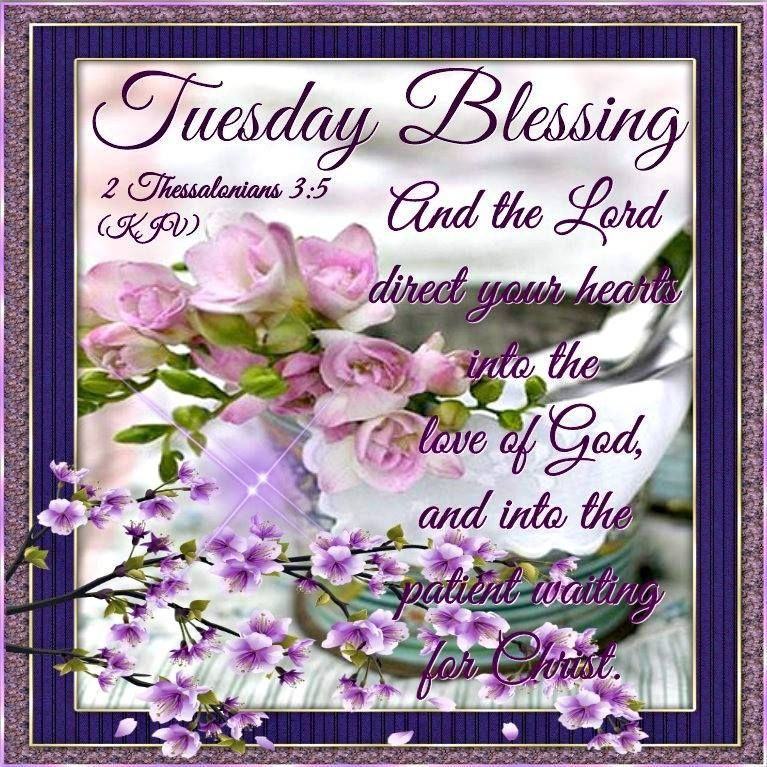 tuesday blessing pictures photos and images for