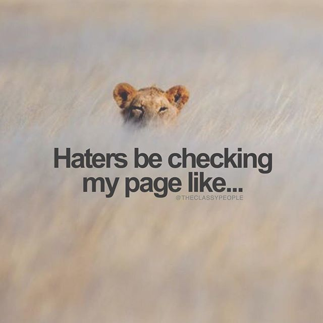 stupid valentines day quotes - Haters Be Checking My Page Like s and