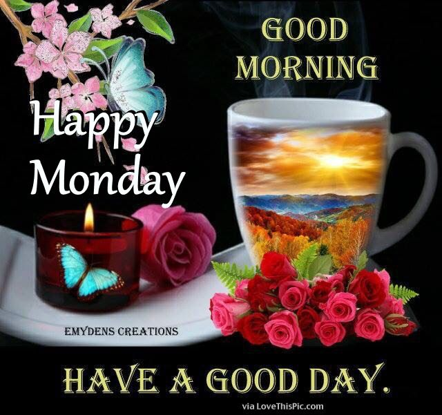 Good Morning Happy Monday Have A Good Day Pictures, Photos ...
