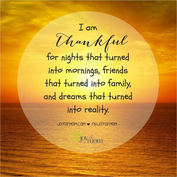 Funny Friday Quotes Humor: I Am Thankful Pictures, Photos, And Images For Facebook