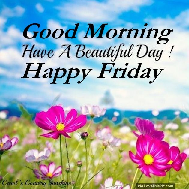 Good Morning Beautiful Have A Blessed Day : Good morning have a beautiful day happy friday pictures