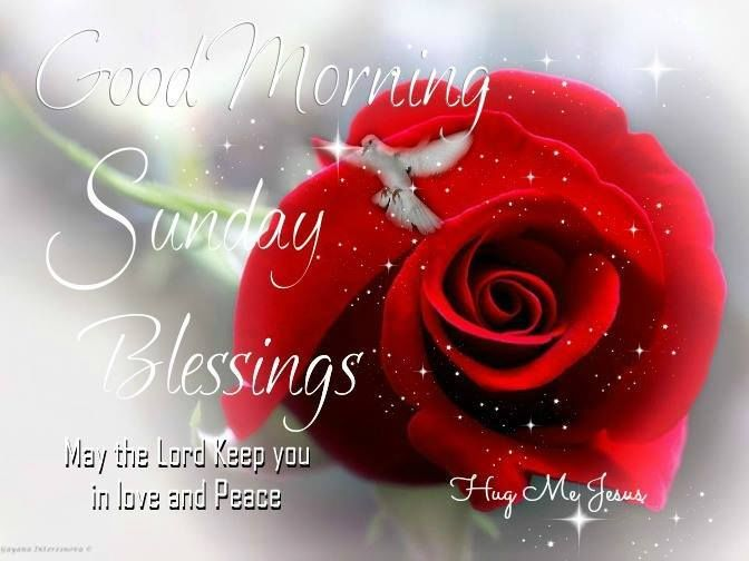 Good Morning Sunday Pick : Good morning sunday blessings pictures photos and
