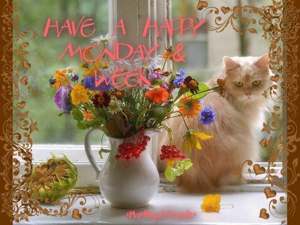 256758-Have-A-Happy-Monday-And-Week.jpg