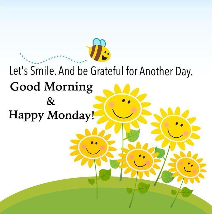 Good Morning & Happy Monday Pictures, Photos, and Images ... Good Morning Happy Monday Quotes