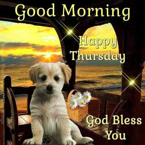 Good Morning God Bless You : Good morning happy thursday god bless you pictures