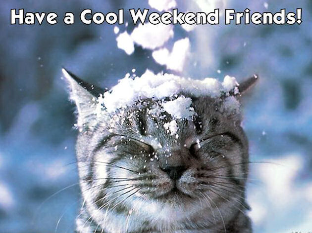 Have A Cool Weekend Friends