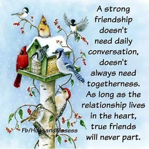 A Strong Friendship Doesn't Need Daily Conversation, Doesn't Always Need Togetherness
