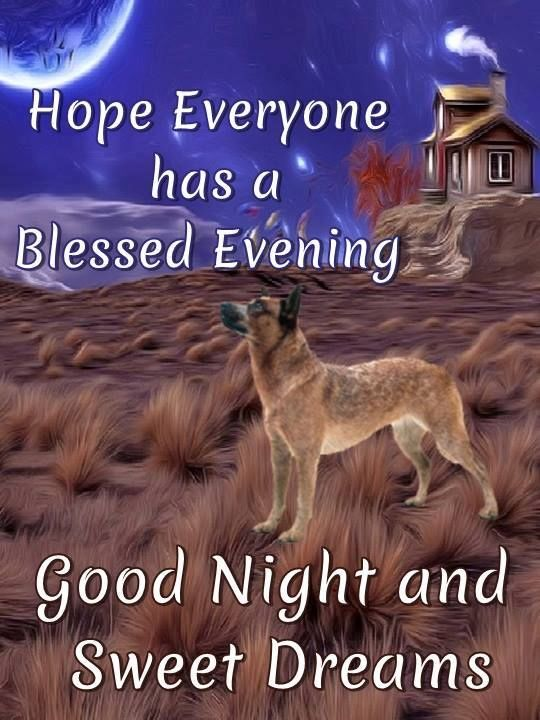Hope Everyone Has A Blessed Evening
