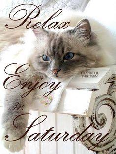 Relax Enjoy Its Saturday