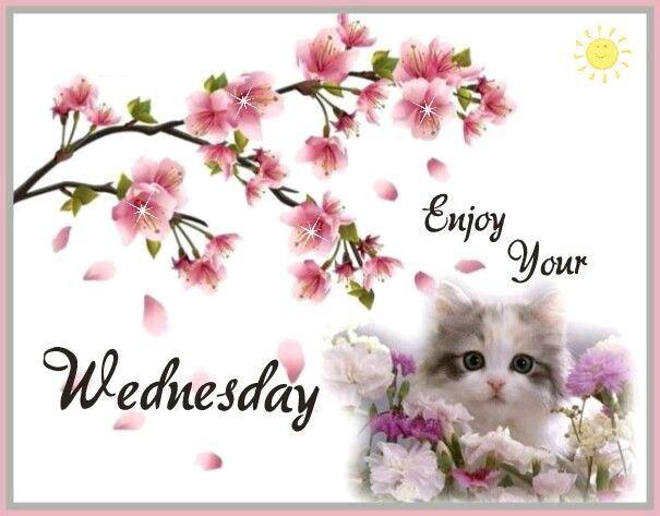 Enjoy Your Wednesday