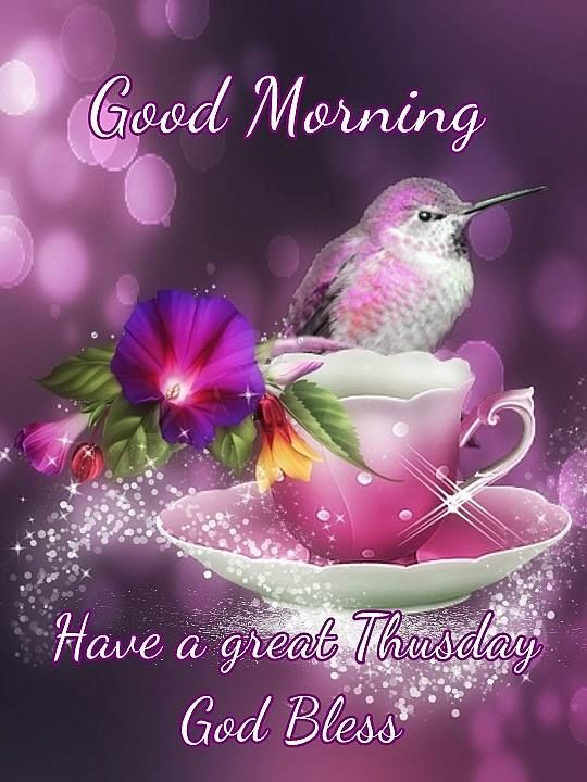 Good Morning Have A Great Thursday God Bless Pictures