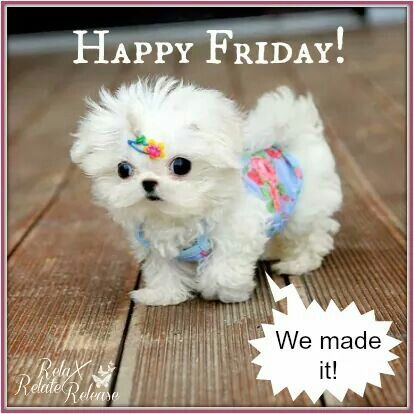 happy friday we made it pictures photos and images for facebook tumblr pinterest and twitter. Black Bedroom Furniture Sets. Home Design Ideas