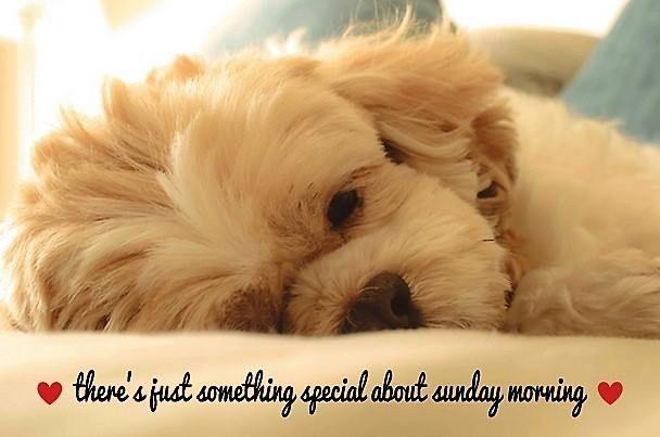 Special Sunday Morning