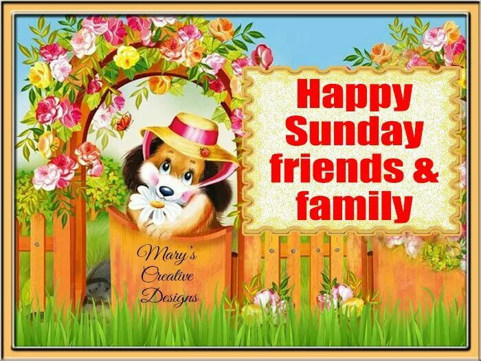 happy sunday friends amp family pictures photos and images