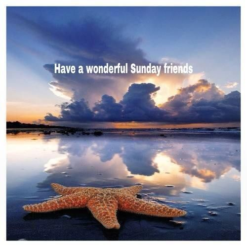 have a wonderful sunday friends pictures  photos  and