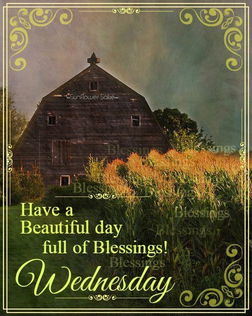 Have A Beautiful Day Full Of Blessings! Wednesday