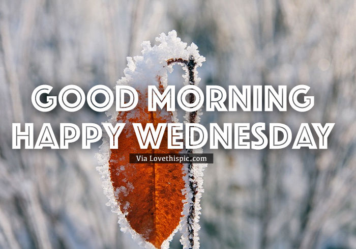 Good Morning Bitter Cold Wednesday Pictures, Photos, and ...