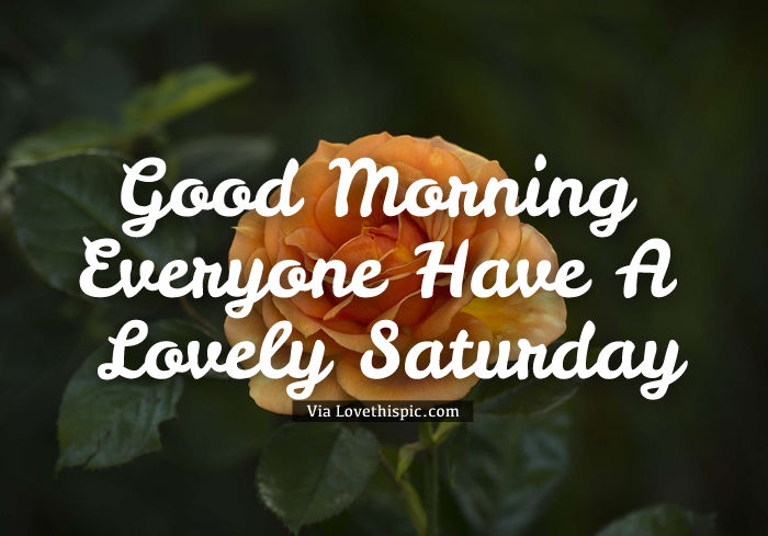Good Morning Everyone Saturday : Good morning everyone have a lovely saturday pictures