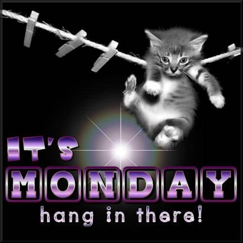 It's Monday...Hang in there!