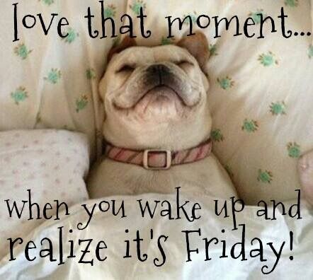 Love that moment...when you wake up and realize it's Friday