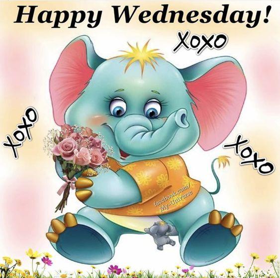 Xoxo Wednesday