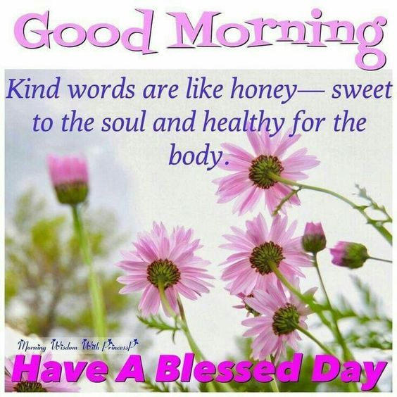 Have A Good Day Honey Quotes: Kind Words Are Like Honey, Good Morning Have A Blessed Day