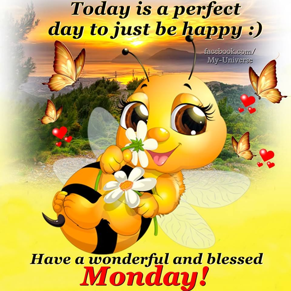 Have A Wonderful And Blessed Monday