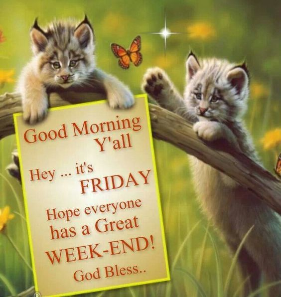 Its Friday, Great Weekend Morning Quote