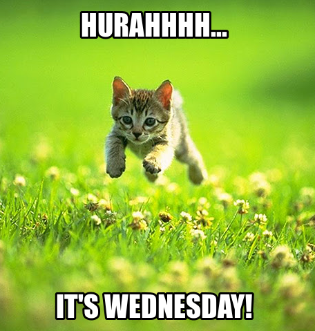 Hurahhhh....it's wednesday!