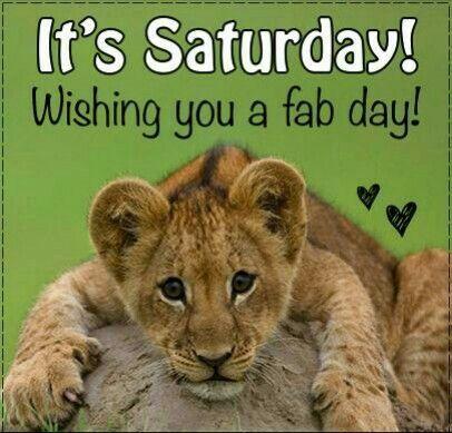 Tiger Cub Fab Saturday