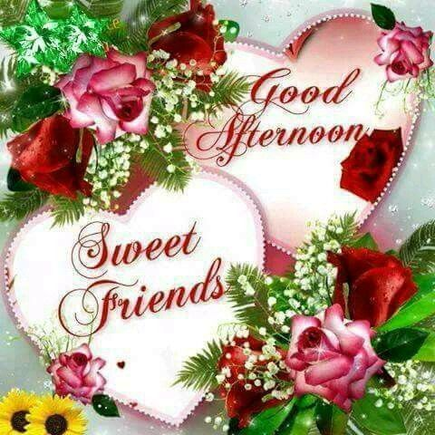Rose Sweet Friends Good Afternoon Image Pictures, Photos